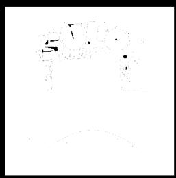 sulory-logo-nega