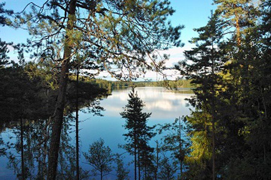 Rentokettu-Nuuksion-kansallispuisto-Siikajärvi